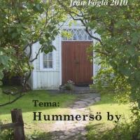 Gammalt och Nytt från Föglö 2010